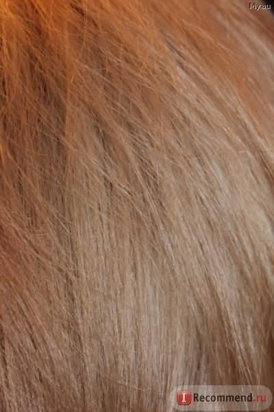 """Восстанавливающая программа для волос Lebel Cosmetics Happiest """"СЧАСТЬЕ ДЛЯ ВОЛОС"""" фото"""