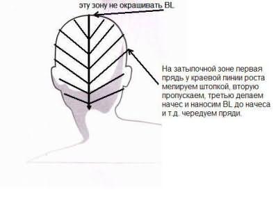 Разбор прядок сзади (BL- блондоран)