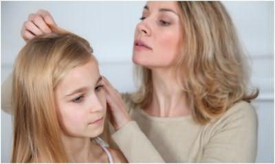 Осмотр головы ребенка на присутствие гнид и вшей