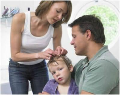 Периодический осмотр кожи головы и волос – защитит от появления вшей и гнид