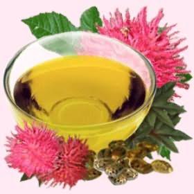 Касторовое масло активно укрепляет и восстанавливает волосы