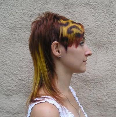 Стрижка впереди коротко сзади длинные волосы