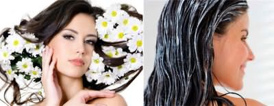 Маски для красивых волос с ромашкой