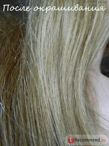 Краска для волос Schwarzkopf IGORA фото