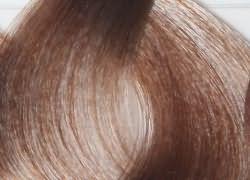 Лесной орех цвет волос эстель