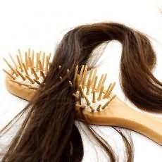 Чешется голова и лезут волосы