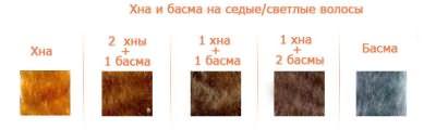 Пропорции хны и басмы