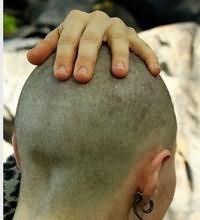 Сонник коротко подстригли
