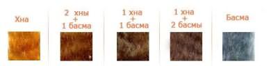 На этой картинке виден результат использования хны и басмы в разных пропорциях на светлых или седых волосах
