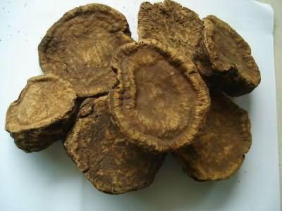 Сушеный корень ревеня (цена 70 руб. 30 грамм)