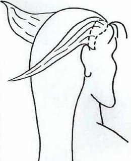 Техника плетения косы рыбий хвост