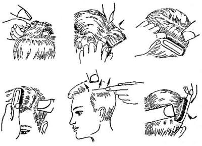 На схеме изображено расположение щетки и фена на различных участках головы.