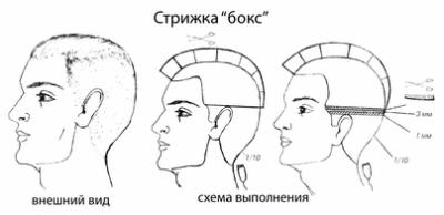 Схема бокса