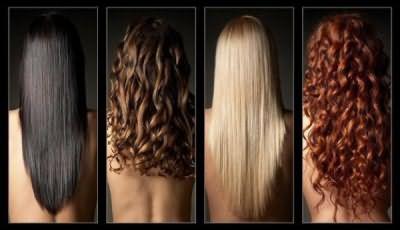 На этом фото можно увидеть основные цвета волос