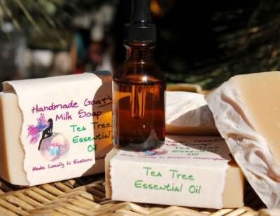 Живут ли вши на окрашенных волосах или натуральных локонах, надежной профилактической мерой станет использование ЭМ чайного дерева