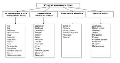 Эфирные масла для разных типов локонов