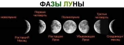 Умение правильно определять лунные фазы важно при планировании ритуала